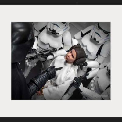"""A Defiant Princess"" (framed sample) - One:Six Shooter"